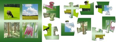 The puzzle of natural resource management